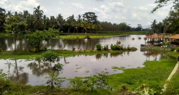 Rawa Indah Almor