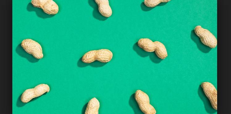 Penelitian Alergi Kacang