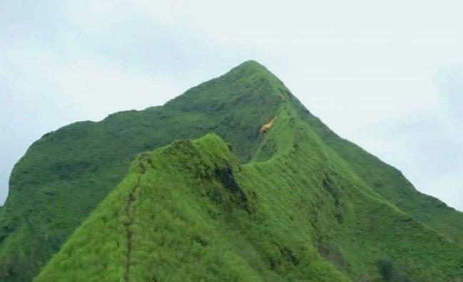 Puncak Piramid Bondowoso