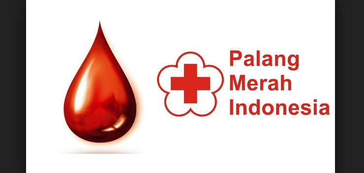 23 Syarat Donor Darah