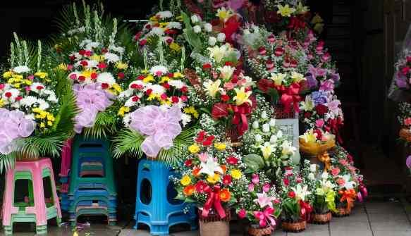Taman bunga Pak Klong Talad di thailand
