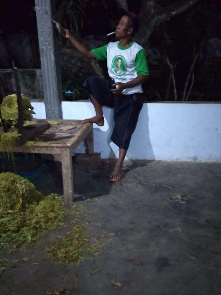 Jasa Perajang Tembakau Cukup Menjanjikan di Bondowoso